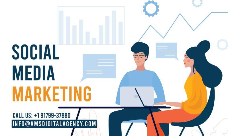 AMS Digital Agency - Photo - 2