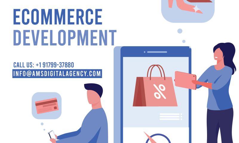 AMS Digital Agency - Photo - 3