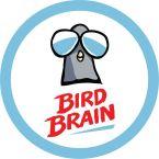 Bird Brain Labs