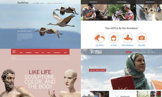 Best Nonprofit Website Examples