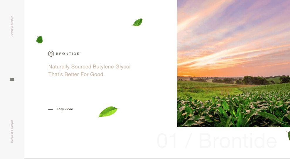 Brontide Website Design Homepage