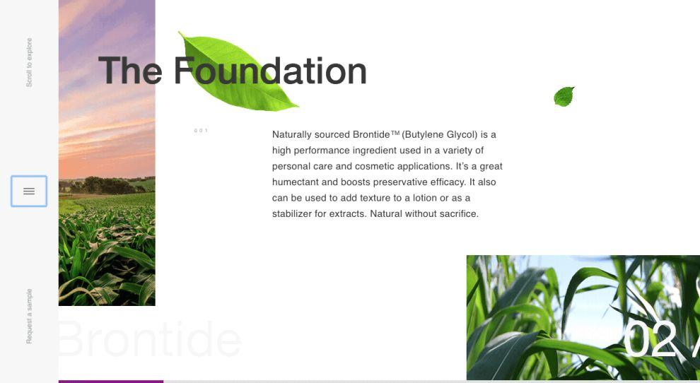 Brontide Top Website Design