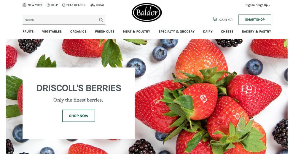 Baldor Homepage