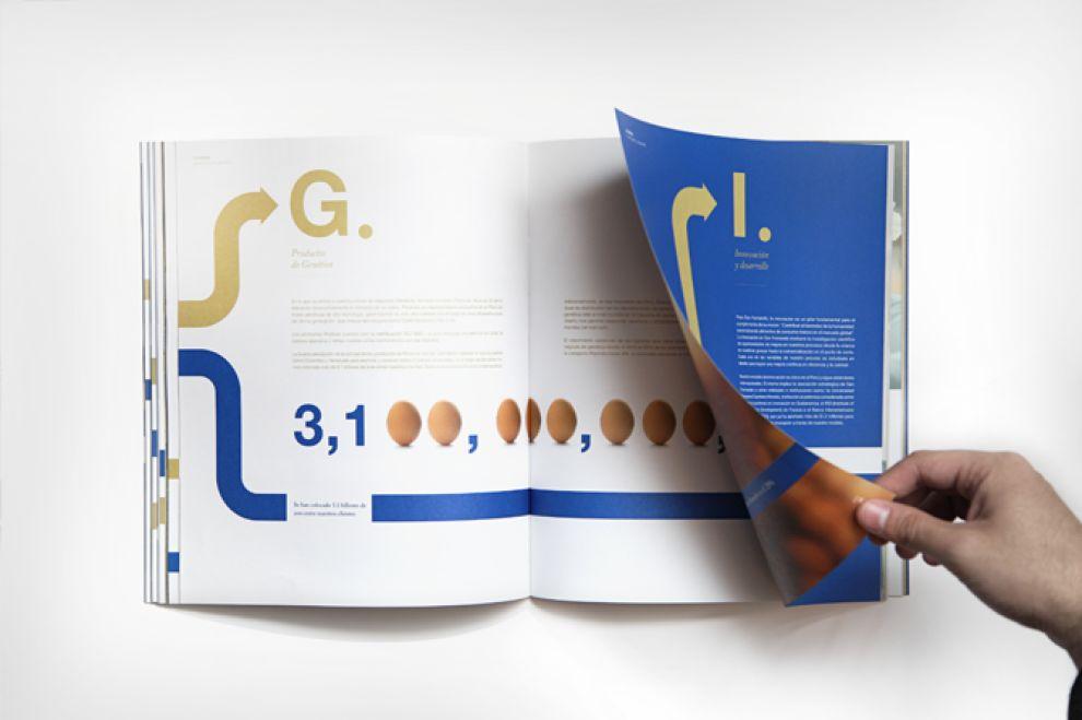 San Fernando Reporte Anual 2012 Clean Print Design