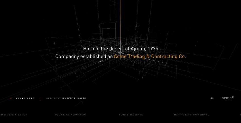 Acme Experience Clean Website Design