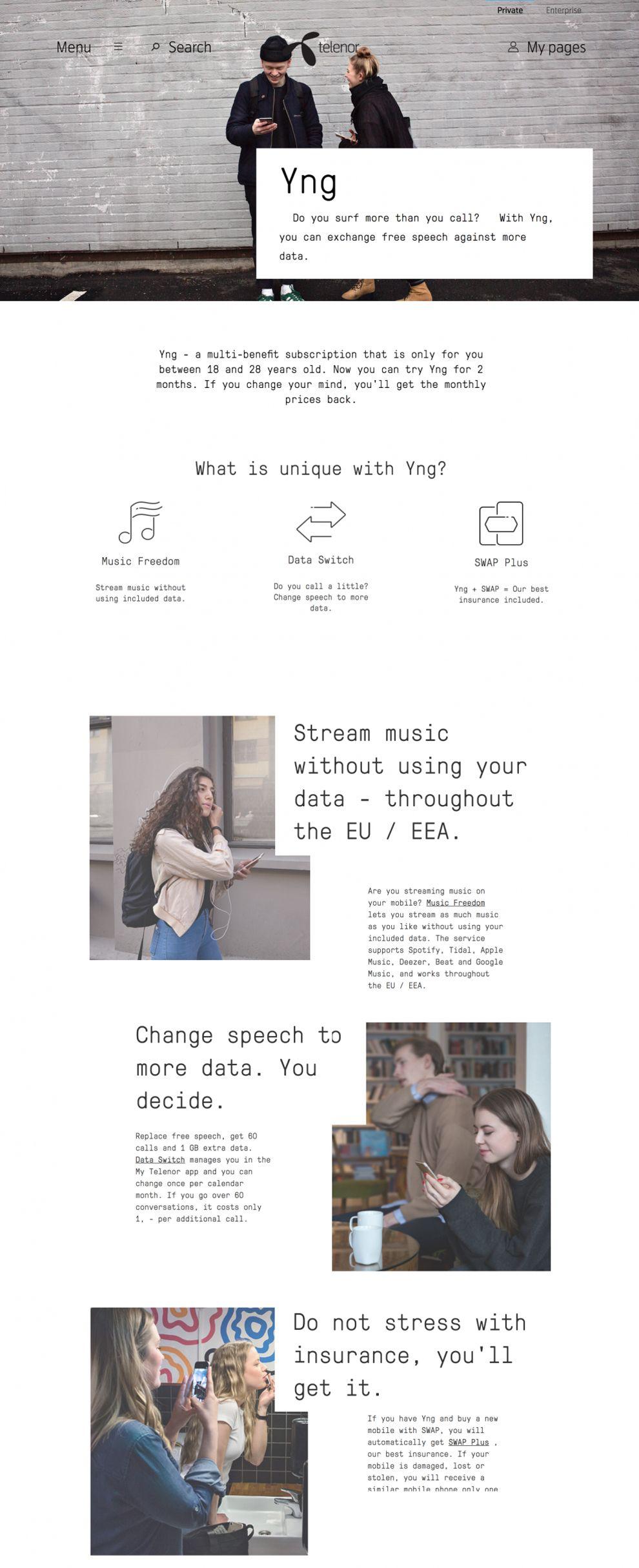Telenoryng Clean Website Design