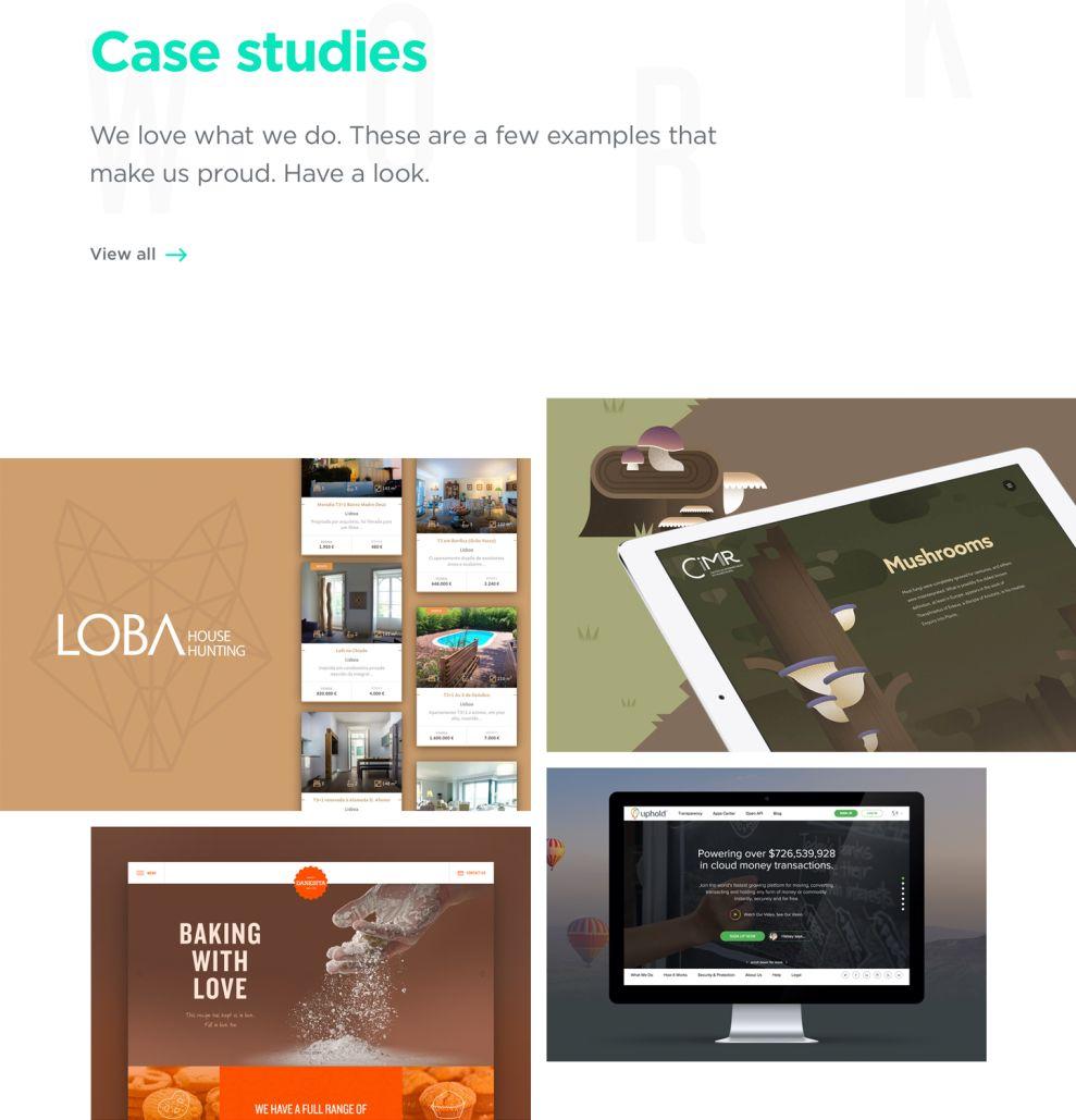Seegno Amazing Website Design