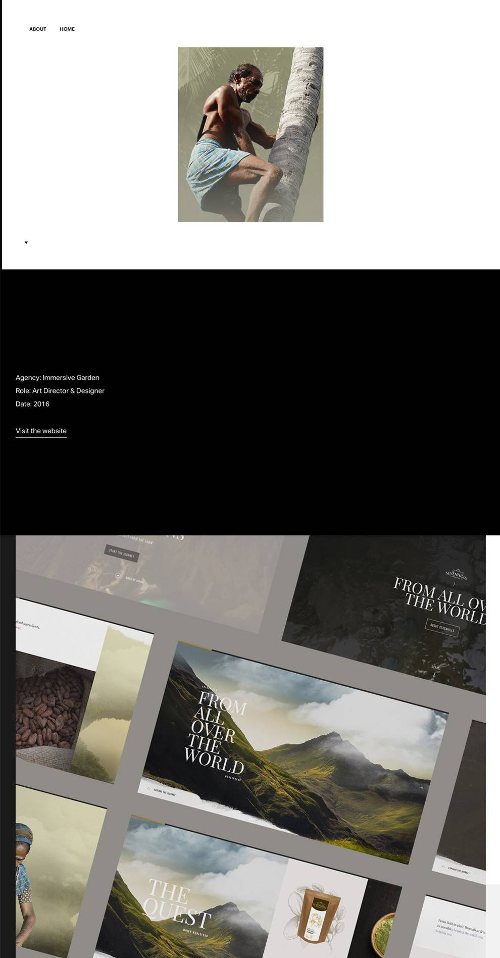 Flavinsky Minimal Website Design