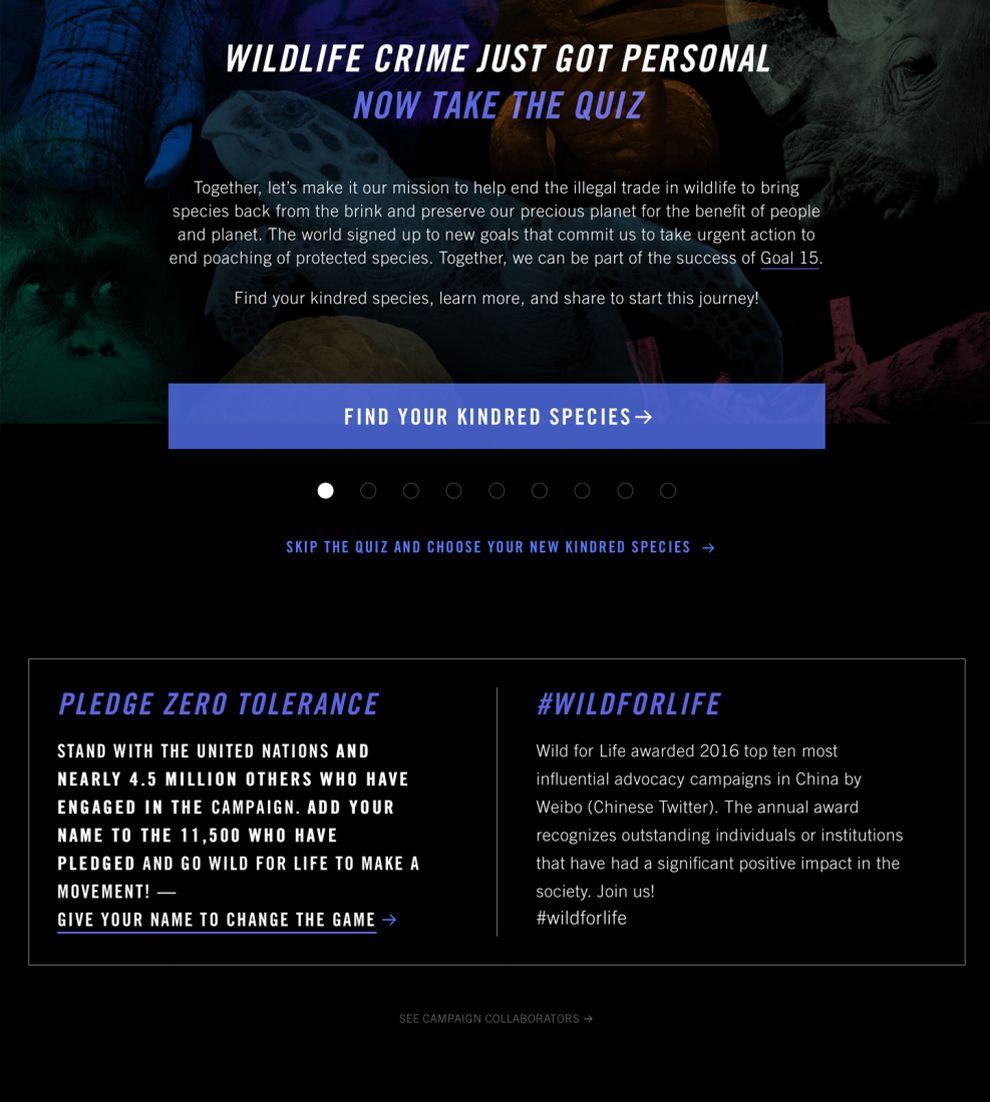 Wild for Life Dark Website Design