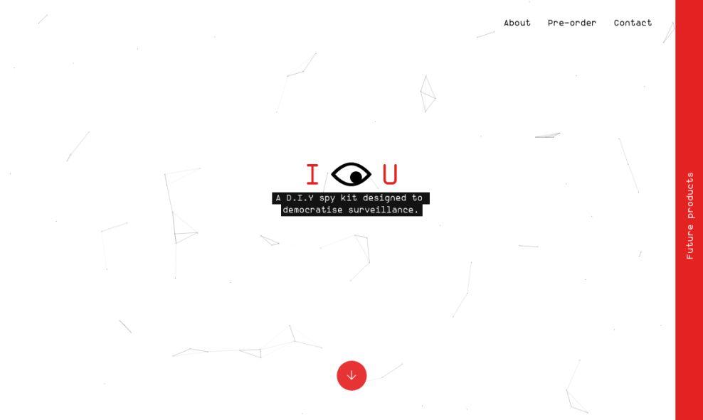 I See You Clean Homepage