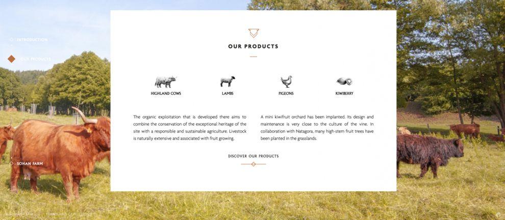 Ferme de Sohan Great Website Design