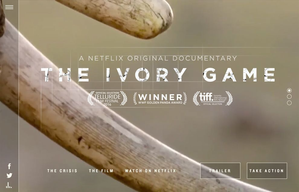 The Ivory Game Awesome Homepage