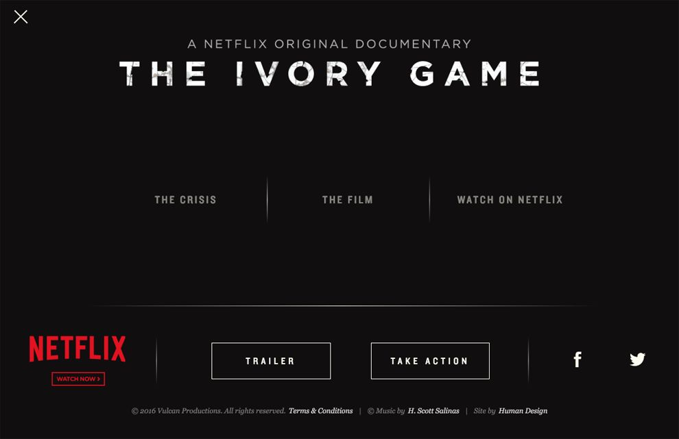 The Ivory Game Awesome Website Design