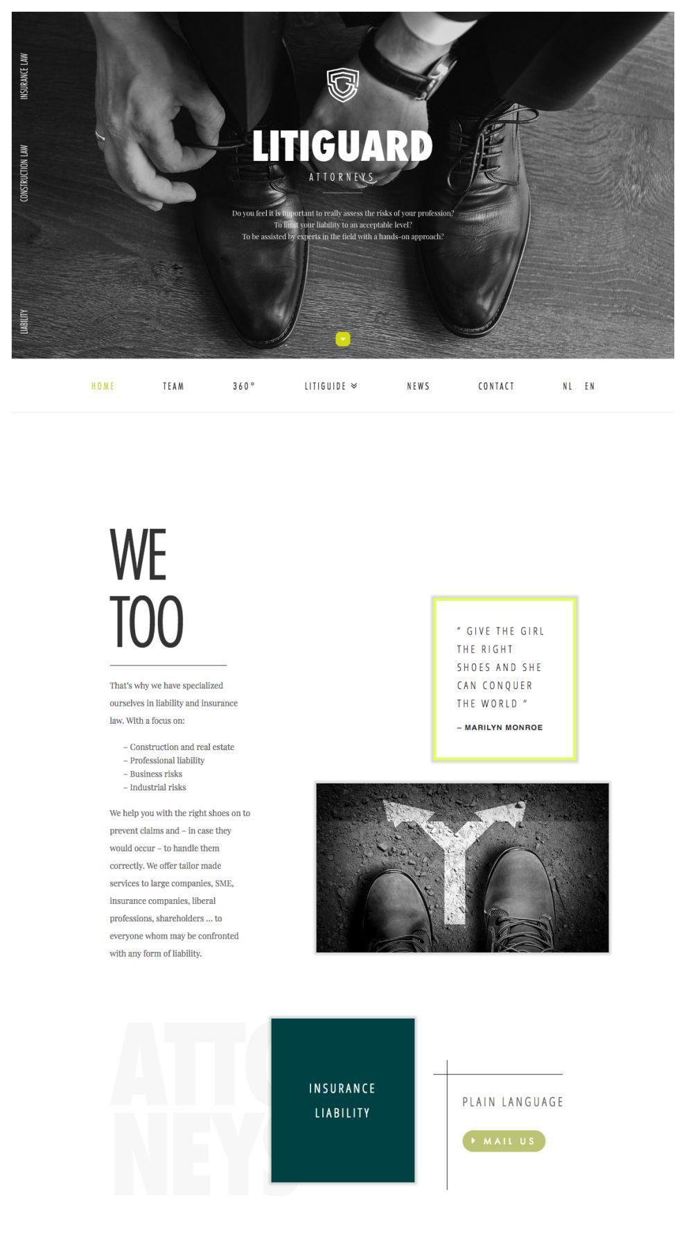 Litiguard Clean Homepage