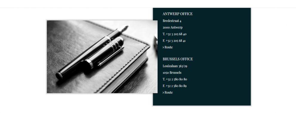 Litiguard Clean Website Design