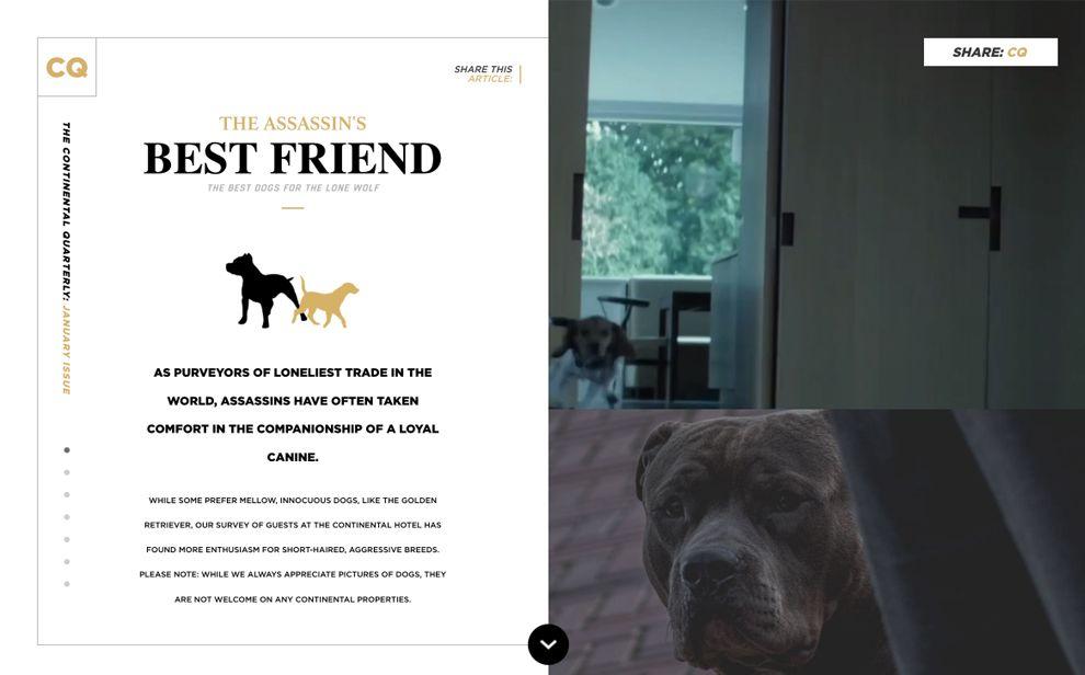 Continental Quarterly Elegant Website Design