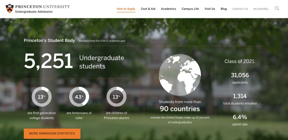 Princeton University Professional About Page