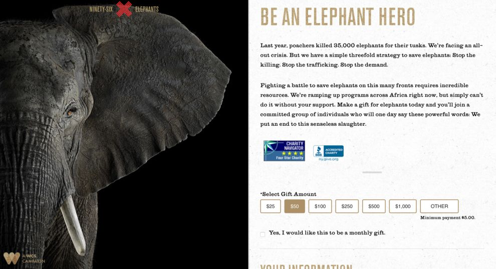 96 Elephants Beautiful Website Design