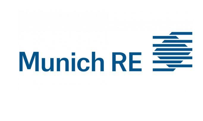 Munich RE Elegant Logo Design