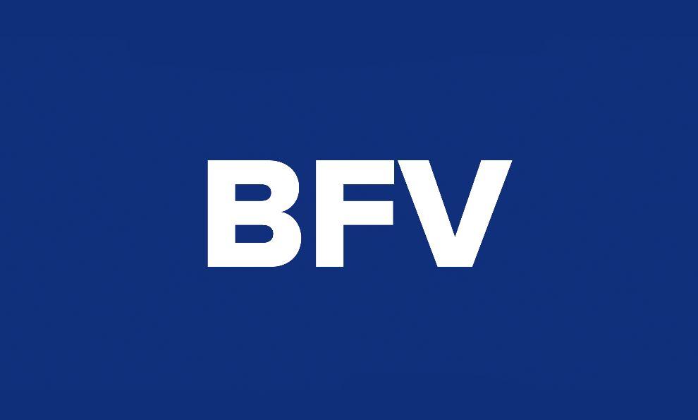 BrandFoundry Ventures Simple Logo Design