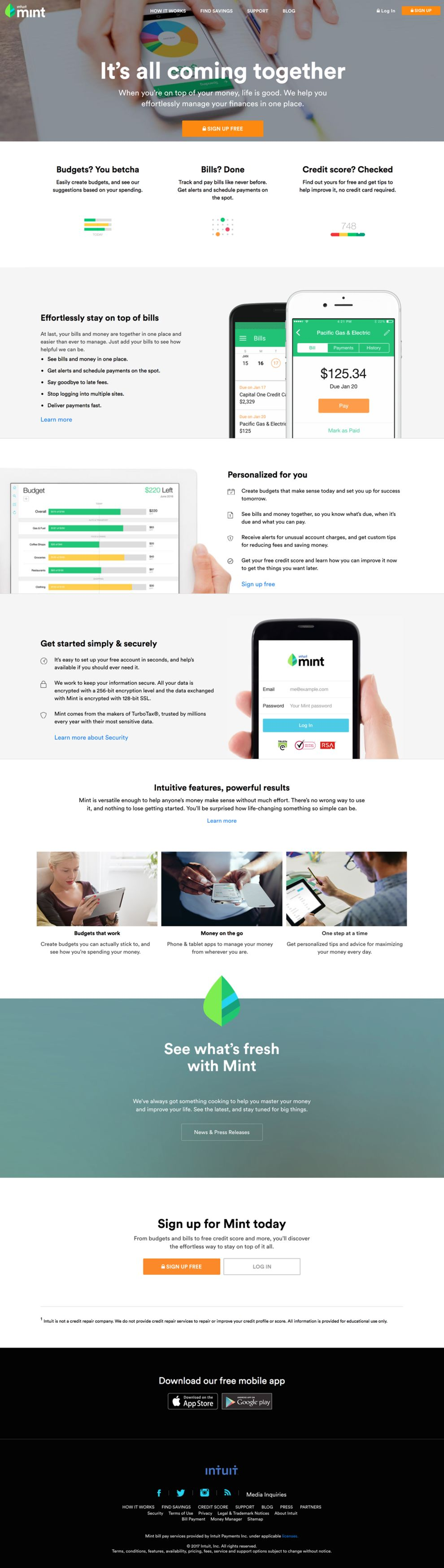 Mint Professional Homepage