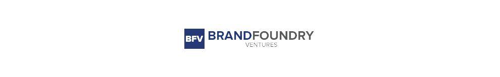 BrandFoundry Ventures Elegant Logo Design