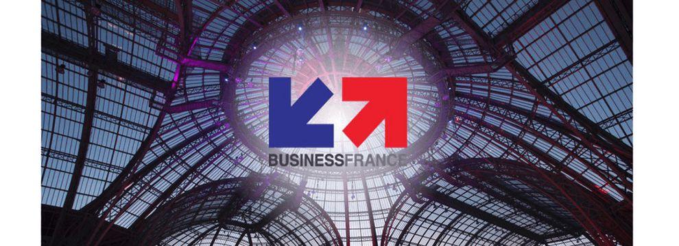 Business France Logo Design
