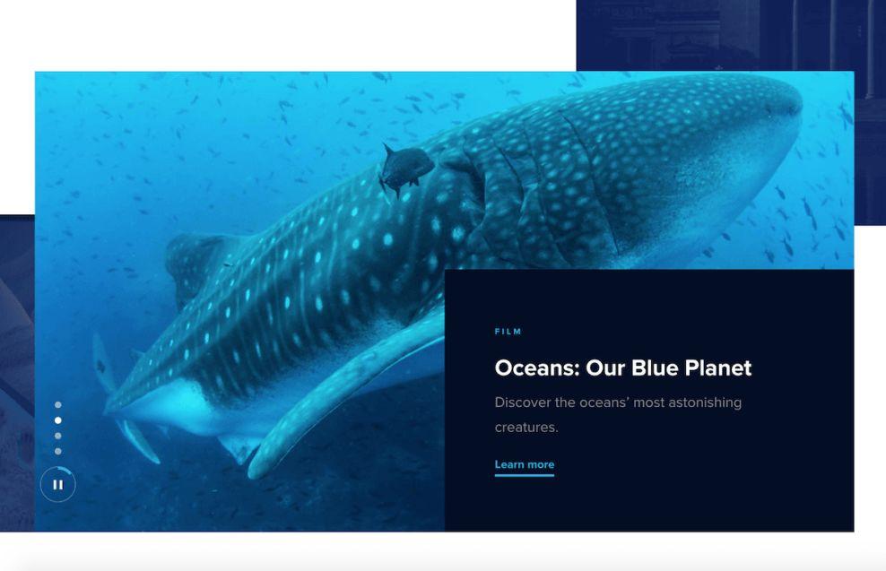Museum of Science & Industry Corporate Homepage