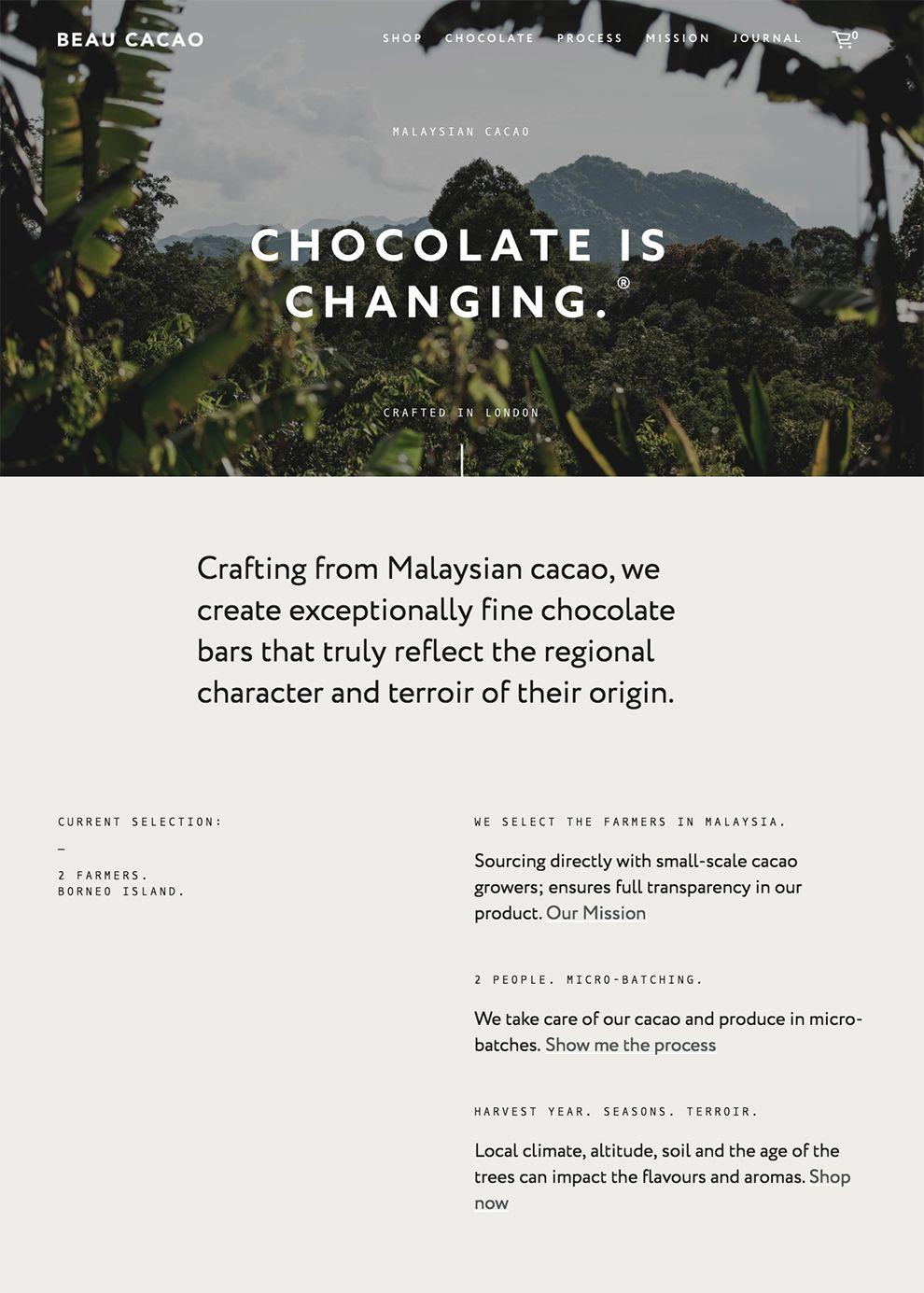 Beau Cacao Best Website Design Homepage