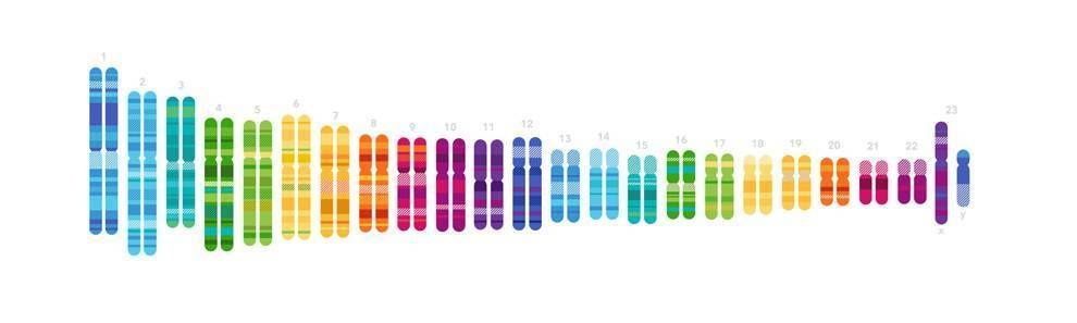 23andMe Colorful Logo