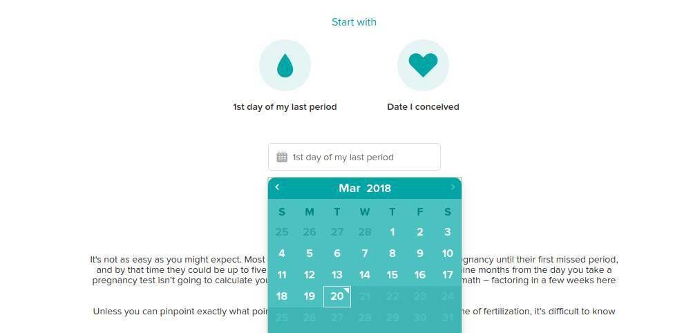 Pampers Website Design Pregnancy Tools