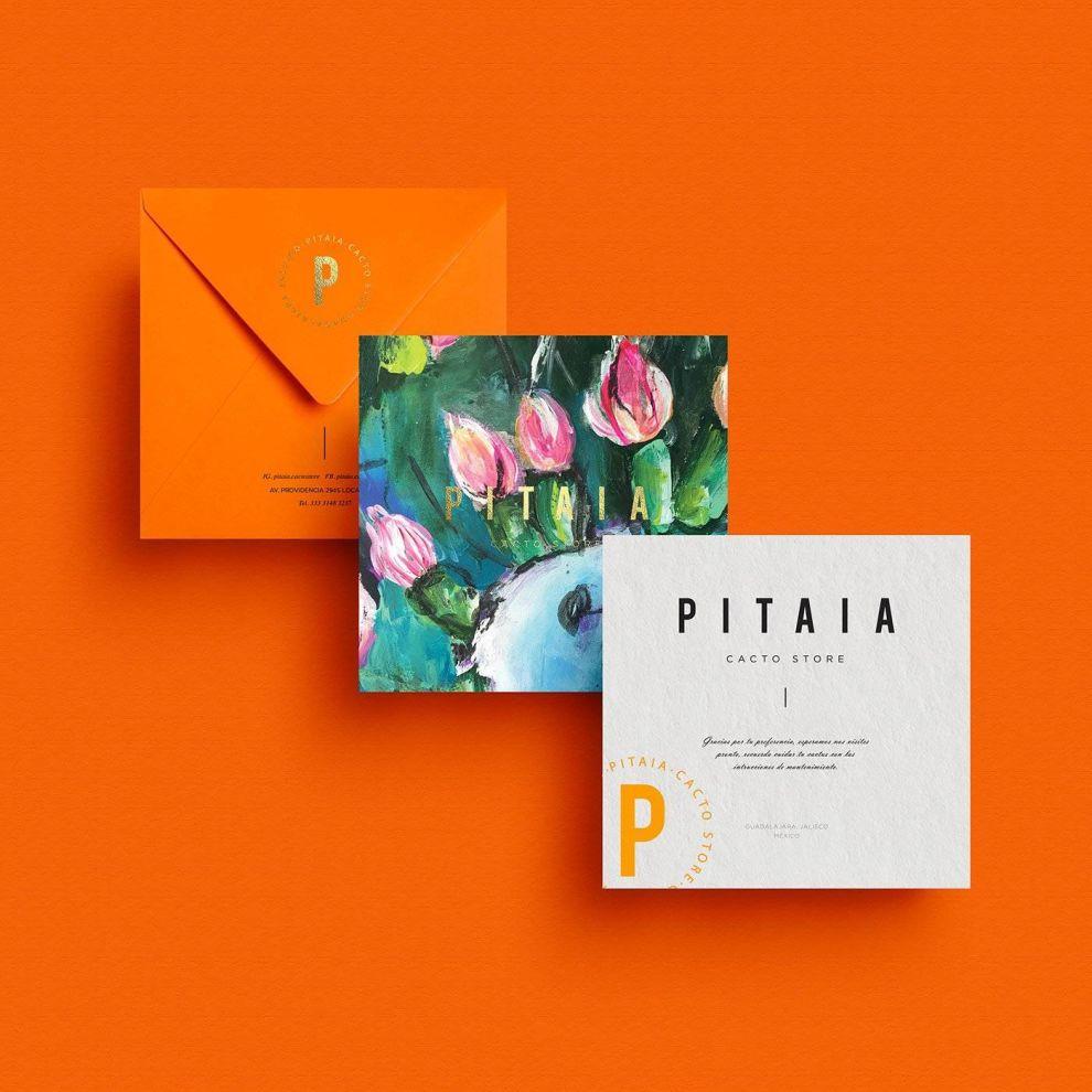 Pitaia Print Design Cards