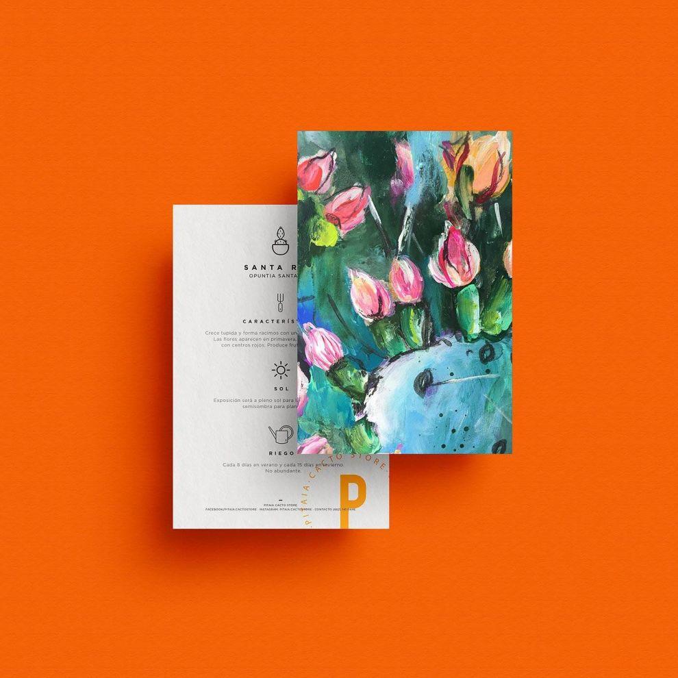 Pitaia Print Design Instructions