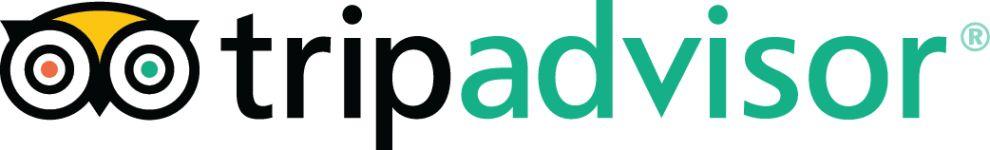 TripAdvisor Bright Logo Design