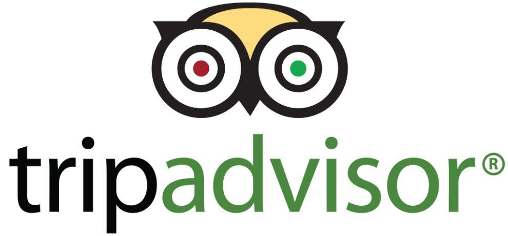 TripAdvisor Stunning Logo Design