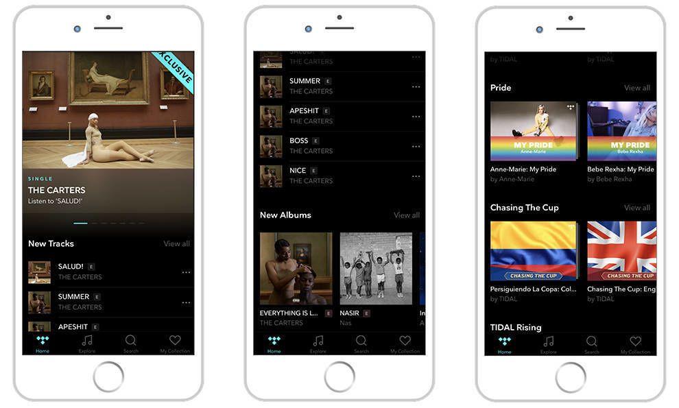 Tidal Imagery App Design