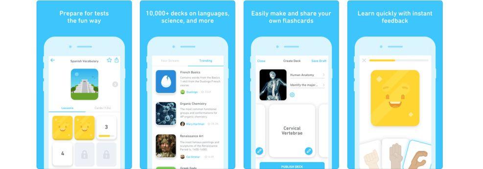 Duolingo Windows App Design
