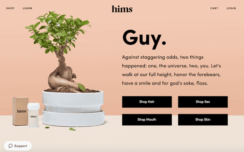 Hims Top Website Design