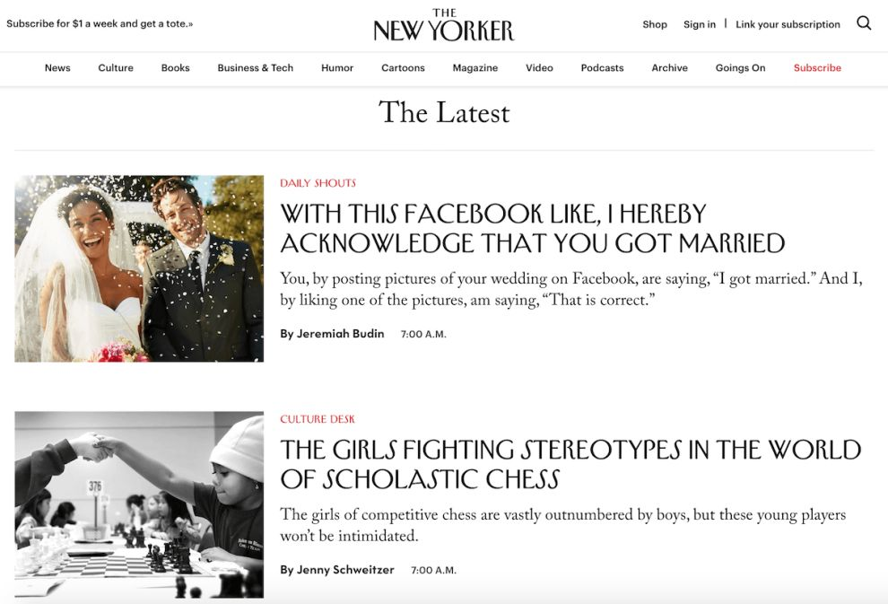 New Yorker Stunning Website Design