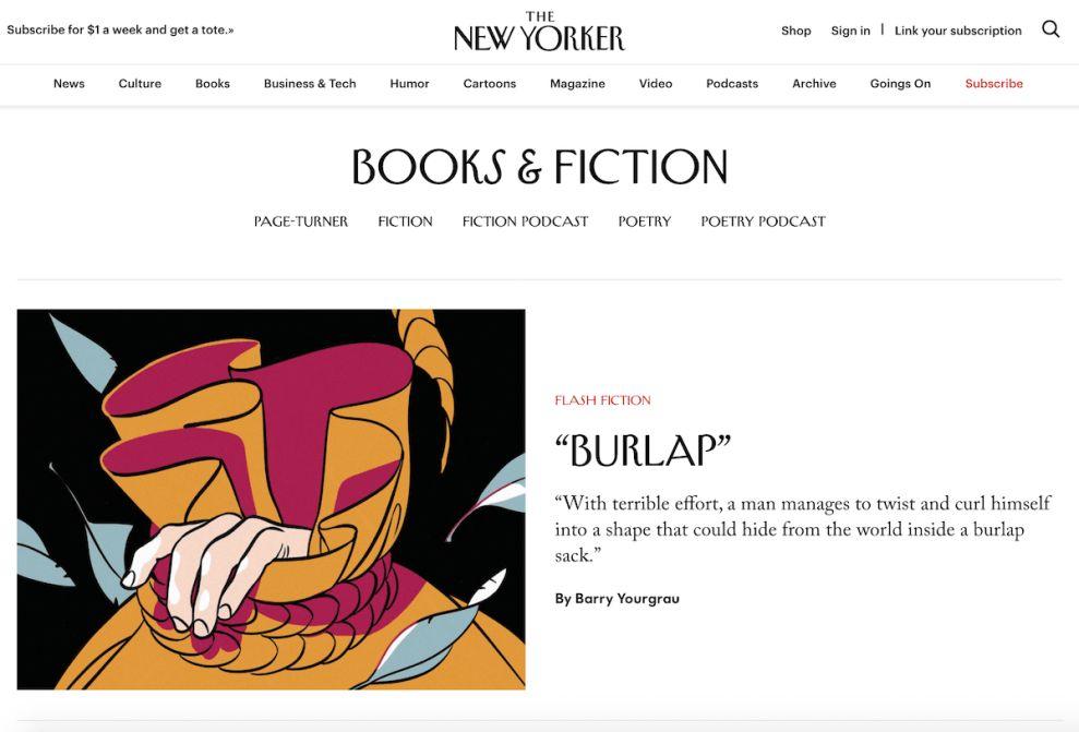 New Yorker Unique Website Design