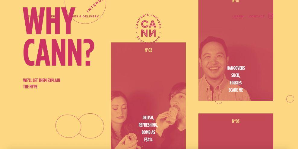 DrinkCann website design overview