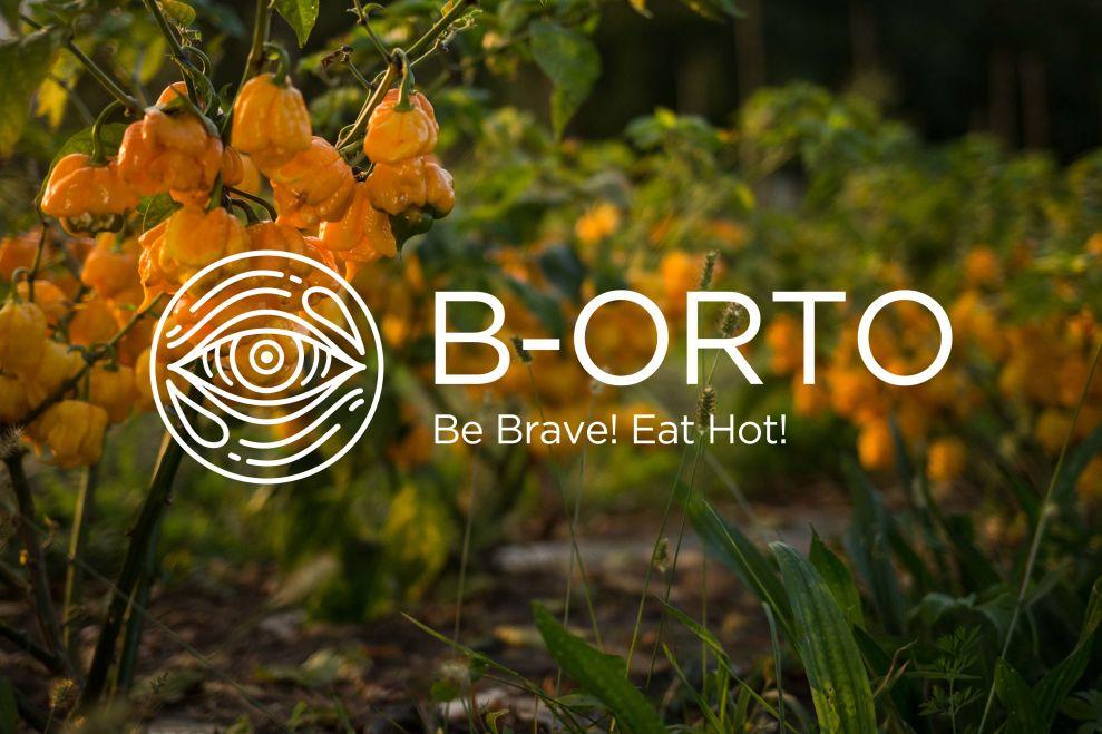 B-Orto logo design