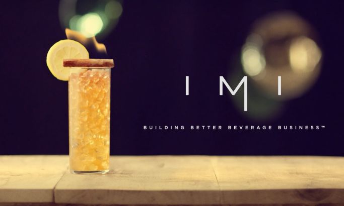 IMI Promotional Video