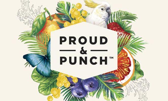 Proud Punch Creative Website Design
