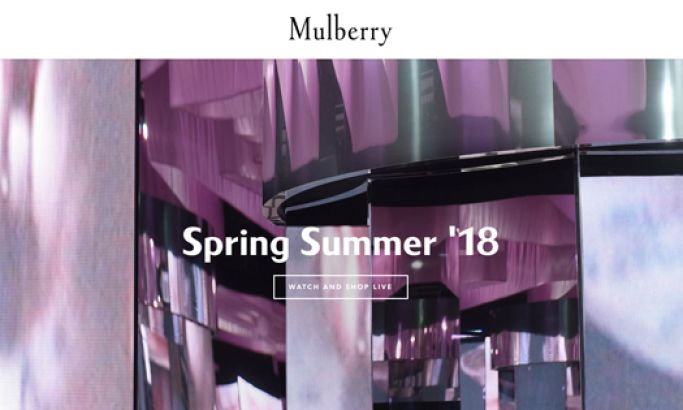 Mulberry Clean Website Design