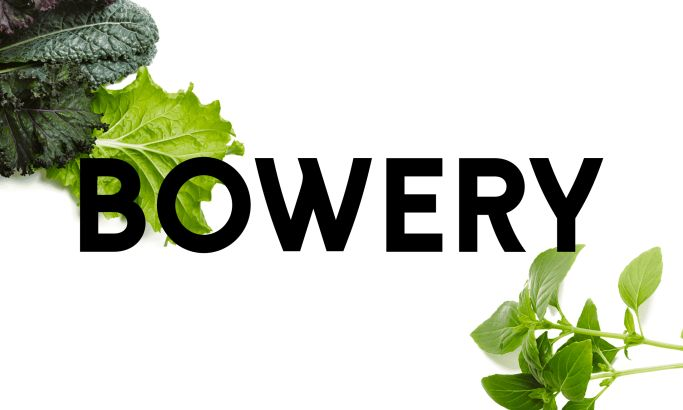 Bowery Colorful Website Design