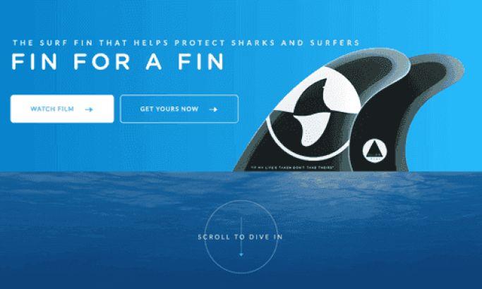 Fin For a Fin Top Website Design