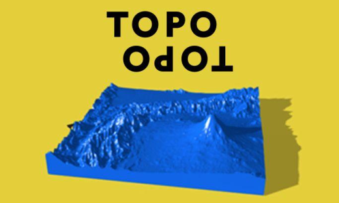 TopoTopo Colorful Website Design