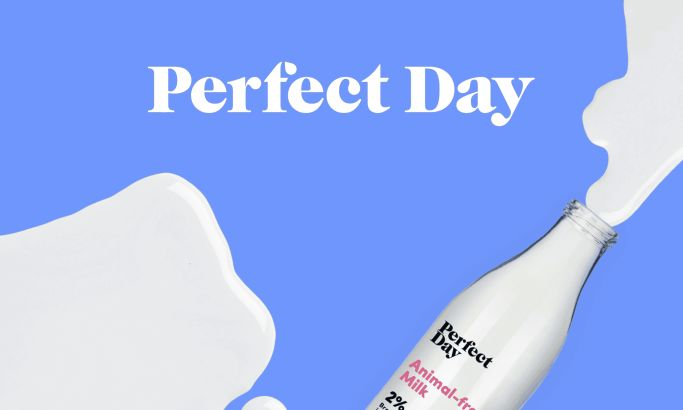 Perfect Day Colorful Website Design