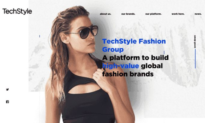 TechStyle Fashion Group Clean Website Design